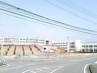 110204_1.JPG